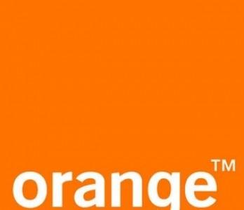 orange-348x300-1.jpg