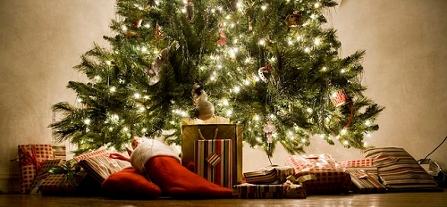 Xmas tree+presents-sml