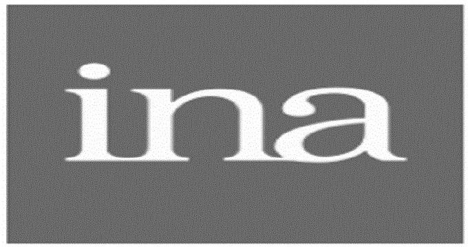 ina-logo-23F1D56050-seeklogo.jpg