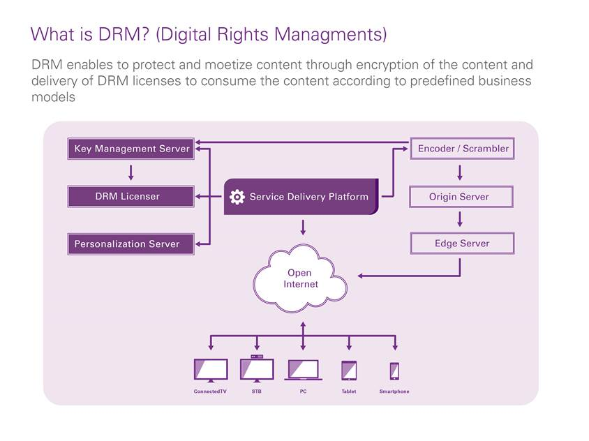DRM_diagram.jpg