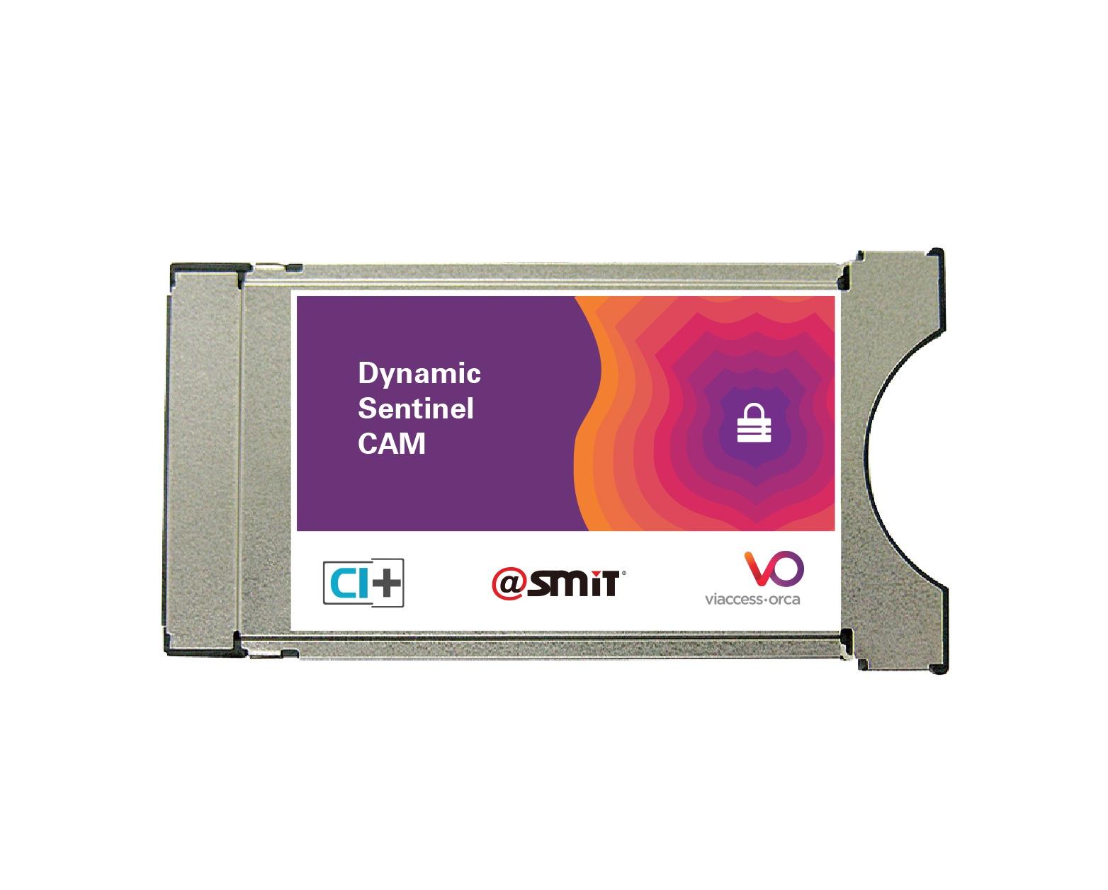SMiT-Dynamic-Sentinel-CAM.jpg